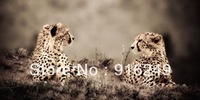 Wild life Leopard  Painting Canvas Print Animal Wall Art Print  Modern Oil Painting 80x160cm