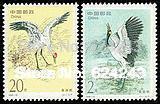 China Stamps 1994-15  Cranes, 1994