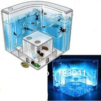 Free shipping High quality Large Size LED light Ant House=ant farm+ant villa educational science toy for Children