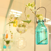 Japanese style hydroponic container glass bottle vase flower at home decoration zakka