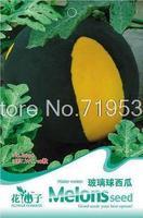 Glass ball watermelon bonsai seeds - mini family pack watermelon bonsai seeds 10seeds b036