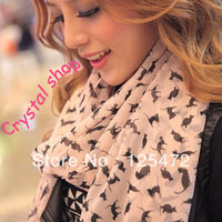 2pcs/lot 2014 New Fashion Womens Sweet Cat Kitten Graffiti Style Scarf Shawl Long Stole