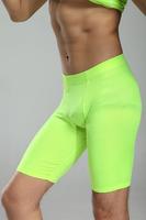 Basic sports fitness basketball football tackle pants tight shorts protective pants thermal