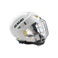 ice hockey helmet professional flanchard hockey protection
