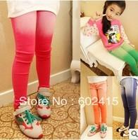 5pcs Children girl's Autumn fashion Wash raw edges gradient pant Jeans 6colors 809