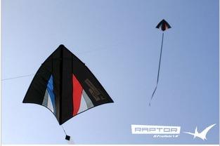 Unifilar Windless Flying Kite,floating disc kite,Ripstop Nylon kite free shipping