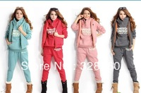 Quality general,Women Autumn Sweatshirts hoodies suit , thickening leisure sports Hoodie (hoody,panty,vest) 3pcs sets M,L,XL