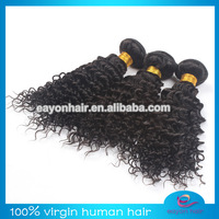 Wholesale12''-24'' curly virgin hair 4pcs lot cheap curly hair natural color burmese hair free shipping by DHL