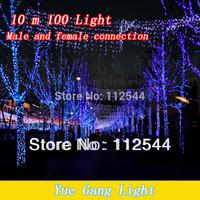 Праздничное освещение Dragonfly 10M100bead New year Holiday lights Christmas decoration LED lights Fairy Wedding Light220v string lights