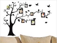 Black memory photo tree wall sticker,living room photo wall,50*70CM
