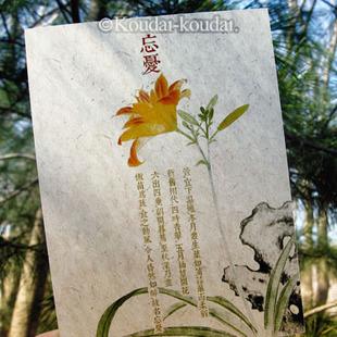 Greeting card hrebaceous 6 oversized measurement cards k118(China (Mainland))