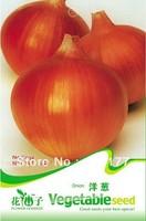 Free shipping 150 Onion seeds,,Hydrangea plant seeds,original pack seeds