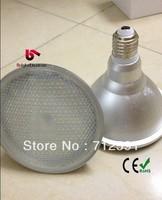 Free Shipping IP65 12W 5050SMD 60pcs Waterproof PAR38 High Power PAR 38 waterproof bulb Lamp Outside lights
