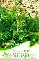 Free shipping 150 Shepherds purse seeds,,Hydrangea plant seeds,original pack seeds