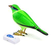 Hotsale nice Free shipping Latest  wireless doorbell bird doorbell fashion model easy to use