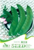 Free shipping 150 Pisum sativum Linn. seeds,,Hydrangea plant seeds,original pack seeds