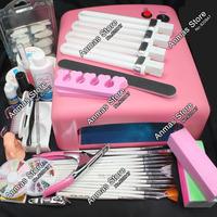 Pro 36W UV GEL Pink Lamp & 15 Brush Nail Art Tool Kits #24