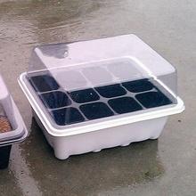 Bandejas y tapas 12 hoyos vivero envío gratuito(China (Mainland))