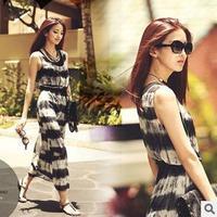 free shipping 2013 new items summer fashion women casual print chiffon plus size dresses 6630