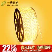 Free shipping New arrival led strip smd 3014 80 beads led strip 220v living room ceiling super bright led with