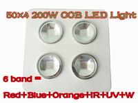 6 band red+blue+orange+white+ IR+UV 200W G3 PRO SERIES 4*50W COB LED grow Light Hot selling 2 years Warranty 120 angle