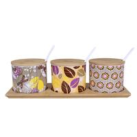 Ceramic spice jar set seasoning bottle fashion bone china sambonet seasoning box