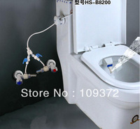 Best Selling Cheap Portable Combined Warm Water Personal Rinse Toilet Attachable Hygienic Bidets Spray Shower, Free Shipping