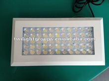 wholesale led ebay