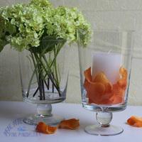 Transparent glass vase hydroponic set glass mousse modern home glass decoration