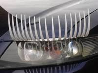 White Car Eyelashes 3D  eyeliner feminist fashion cute striker Headlight eyelashes lashes for car 1 PAIR