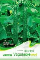 1 Pack 20 Seed Cucumber Seeds Cucumis Sativus Linn Seed Hot C016