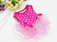 CUTE ROSE Polka Dot LACE Small Pet Dog Cat puppy Clothes dress size XS S M L