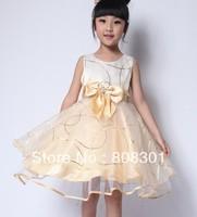 Hot Sale! New!Free Shipping! 2013 New Children Girls Summer Baby Gilrs TUTU Dress,Kid's Dress,Girls Dresses