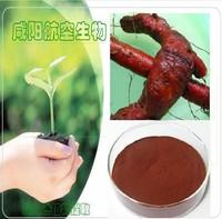 Salvia Root P.E. / Salvia miltiorrhiza P.E. Tanshinone IIA:1~98%%