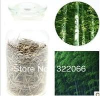 200PCS + MOSO BAMBOO HUGE MAO BAMBOO- Seeds - Phyllostachys pubescens / edulis - Moso Hardy Bamboo