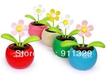 solar apple flower reviews