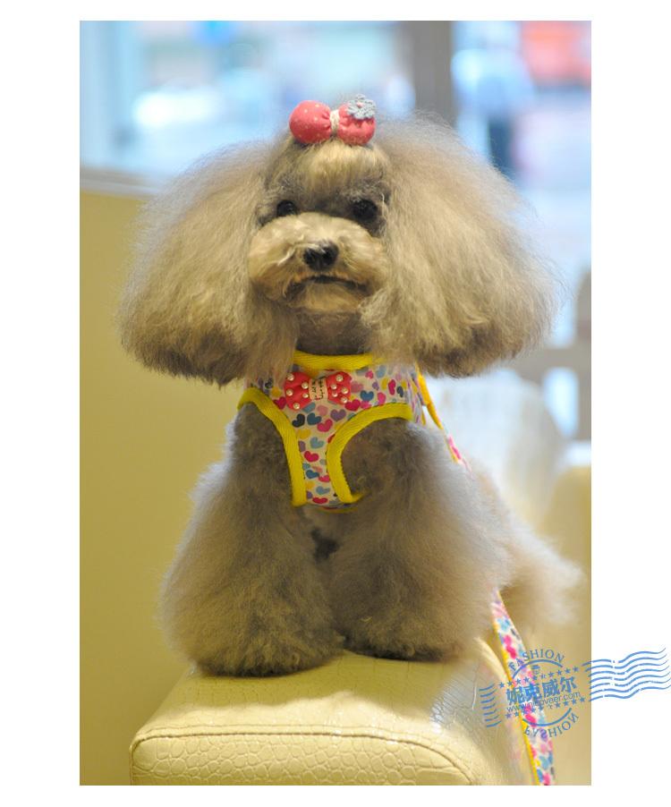 dog-lead-leash-dog-harness-Cute-yellow-colorful-heart-bow-knot-dog