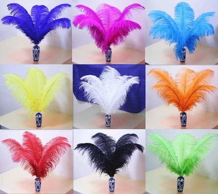 Diy show props furniture office decoration 40 - 45 ostrich feather