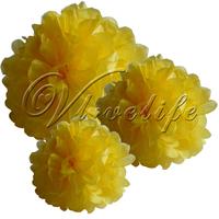 "Free shipping 10pcs 38cm 15"" Light Yellow Tissue Paper Pom Poms Wedding Birthday Party Home Decor Craft Favors"