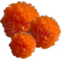 "Free shipping 10pcs 38cm 15"" Orange Tissue Paper Pom Poms Wedding Birthday Party Home Decor Craft Favors"