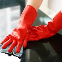 Free Shipping Good Quality Warm Keeping Dish Washing Glove, Flocking Inside Cleaning Glove, Antislip Housework Glove