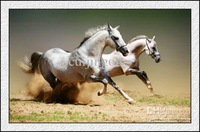 Wholesale - Hot Sell 100% Print Art Animal Running Horse On Canvas Never Fade .. 24x36 inchs @118