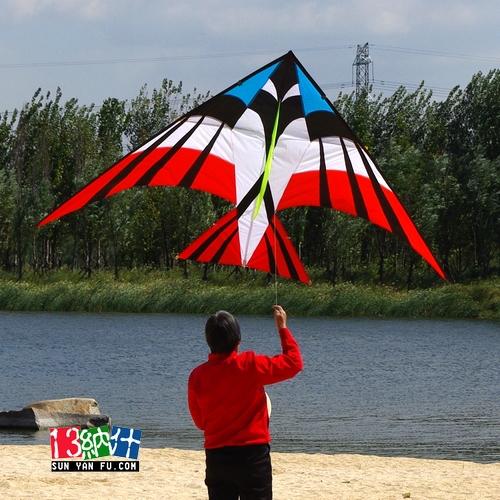 N78 large delta kite of 2.8 meters hard umbrella resin rod nash kite(China (Mainland))