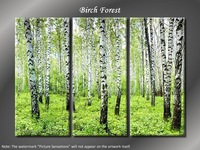 "Hugh 3 Panel Modern Nature Spring Trees ""Birch Forest"""