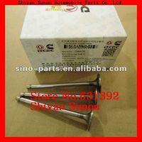 DCEC Parts ISBe Exhaust Valve 3940734