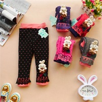 Free shipping Girls Leggings 2013 autumn and winter new Girls Thicken Cartoon bunny leggings children pants 5colors