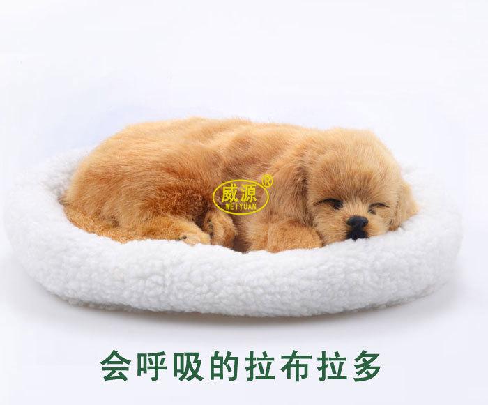 pampered petz pet mate breathing dog labrador retriever