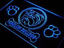 ADV PRO j957-b English Bulldog Paw Print Dog Neon Light Sign(China (Mainland))