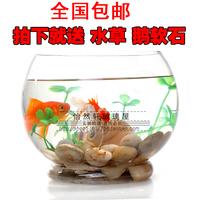Transparent Medium glass fish tank goldfish bowl turtle tank base glass fish tank