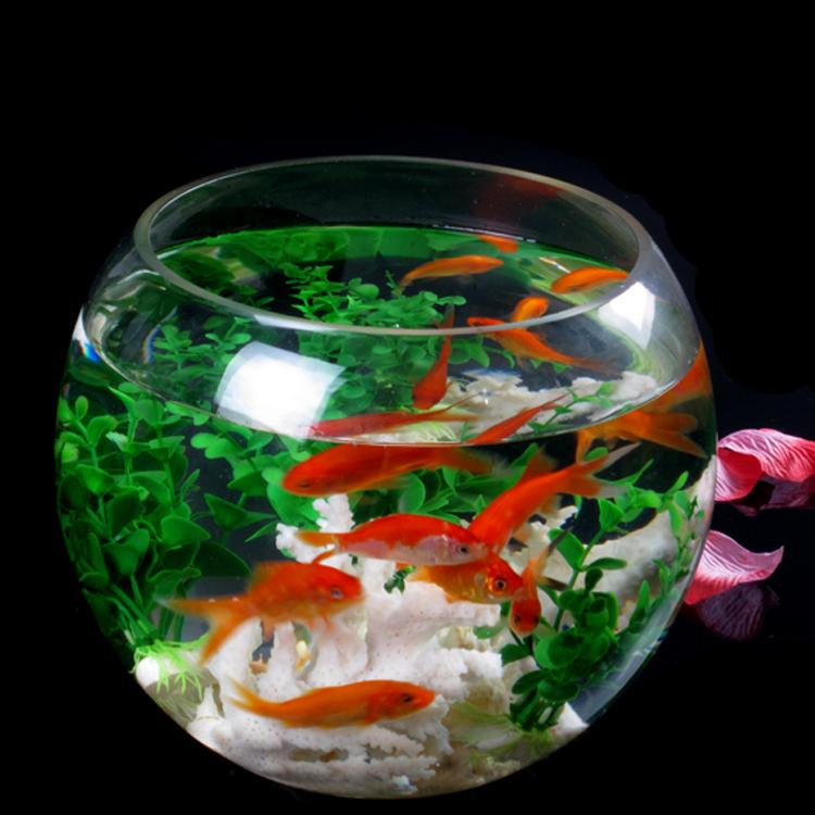 Transparent Large glass fish tank goldfish bowl hydroponics vase ball ...